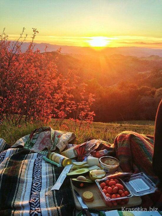 пикник на природе знакомства